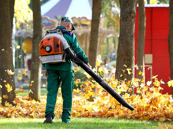Lawn Cleanup - Spicer, MN