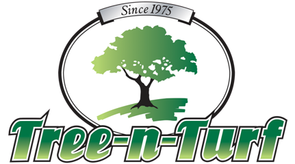 Tree N' Turn Service, Inc - Spicer, MN